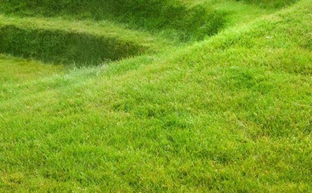 Grass Amphitheatre Design