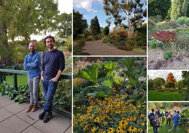 Garden Design Essex Studio 31