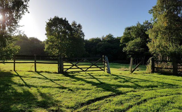 Landscape Architecture Essex